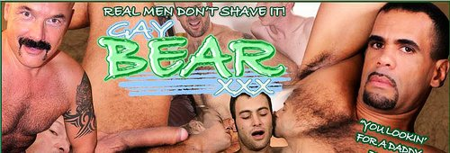 Gay Bear XXX Review